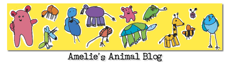 ameliesanimals's Blog